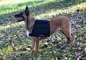 Leerburg weighted dog vest