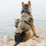 tactical operations dog harness